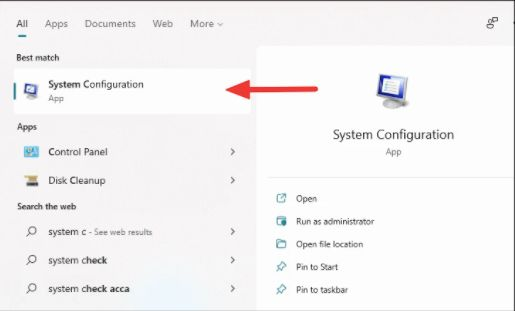 Windows 11 High Disk Usage